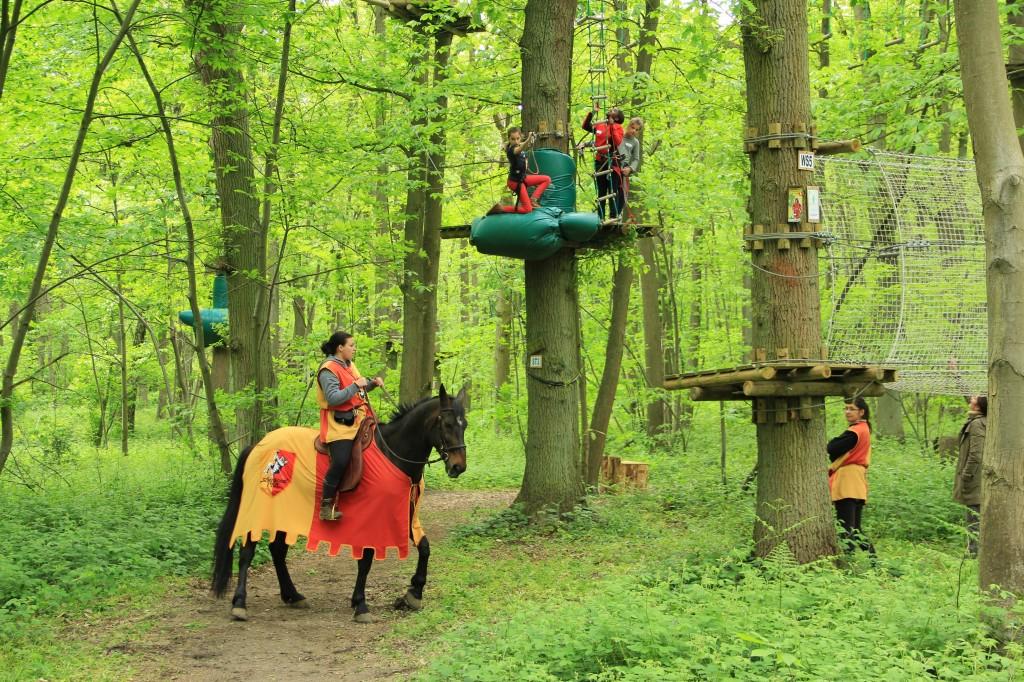 Sherwood parc PROXIFUN Accrobranche, Parc d'attraction et loisirs en France # Accrobranche Saint Léonard Des Bois