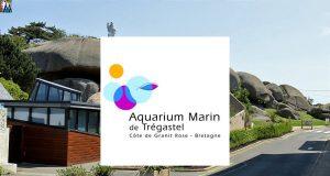 aquarium-de-tregastel
