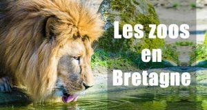 Zoo en Bretagne