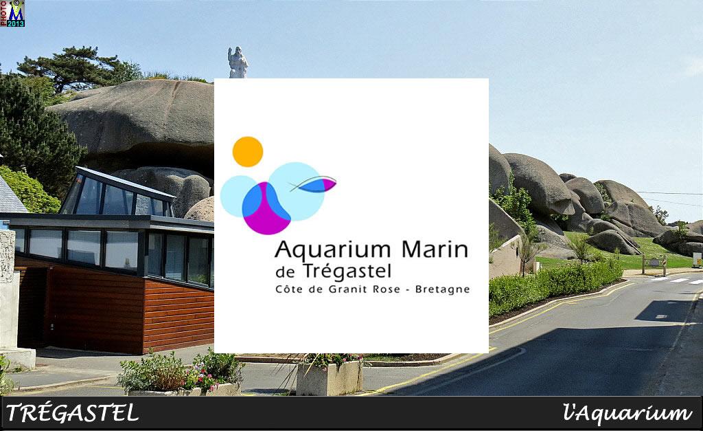 aquarium de tr gastel aquarium en bretagne proxifun. Black Bedroom Furniture Sets. Home Design Ideas