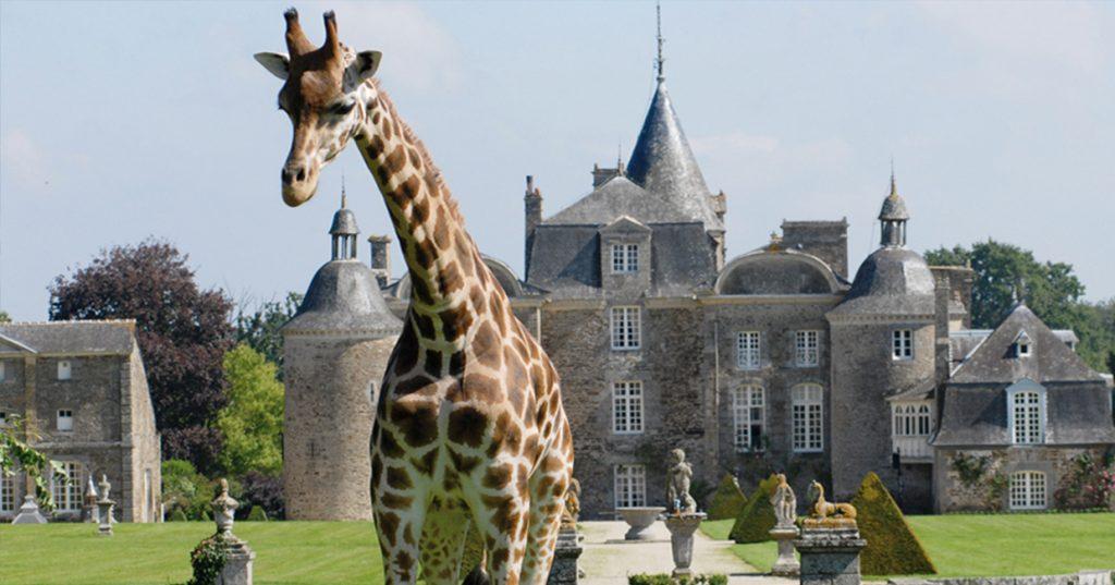 Zoo de la Bourbansais, entre Rennes et Saint-Malo