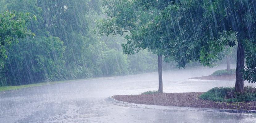 que faire marseille quand il pleut top 7 des activit s 1 jour de pluie. Black Bedroom Furniture Sets. Home Design Ideas